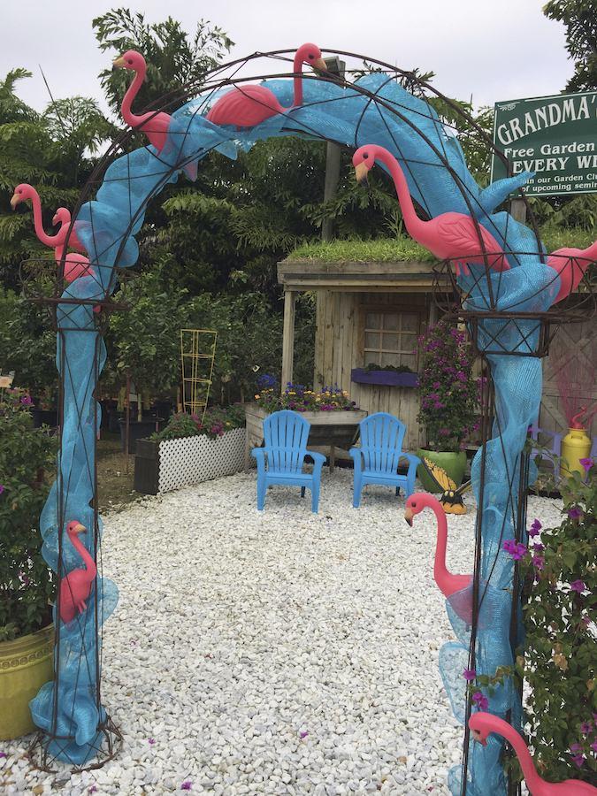 Flamingo Road Nursery, Davie Florida