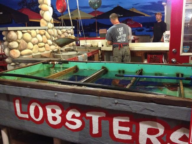 McCool Travel: lobster in Maine