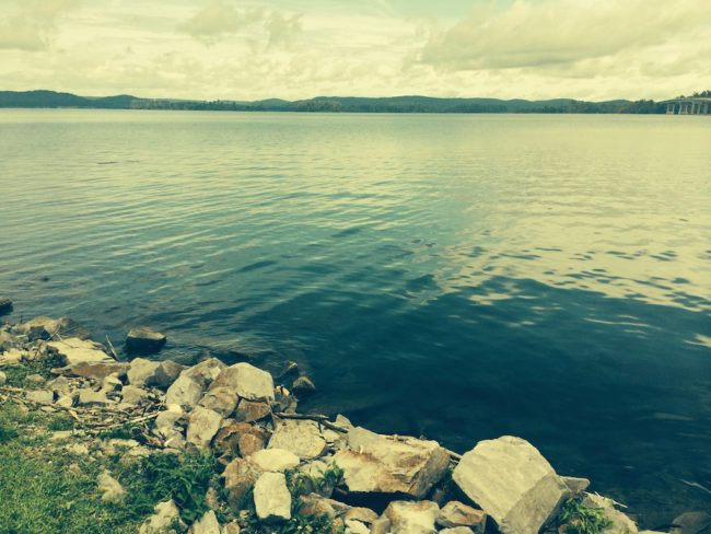 Northeast Alabama Guntersville Lake
