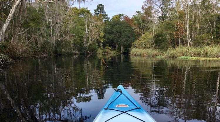 kayak in Lofton Creek, Amelia Island, Florida