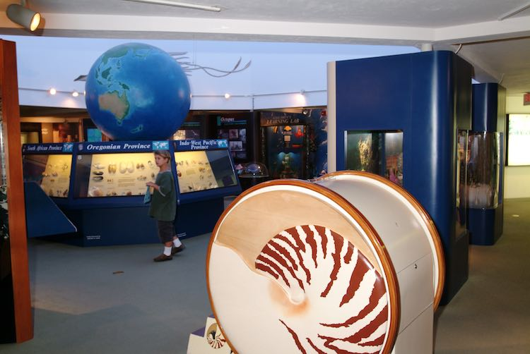 Shell Museum, Sanibel Island, Florida