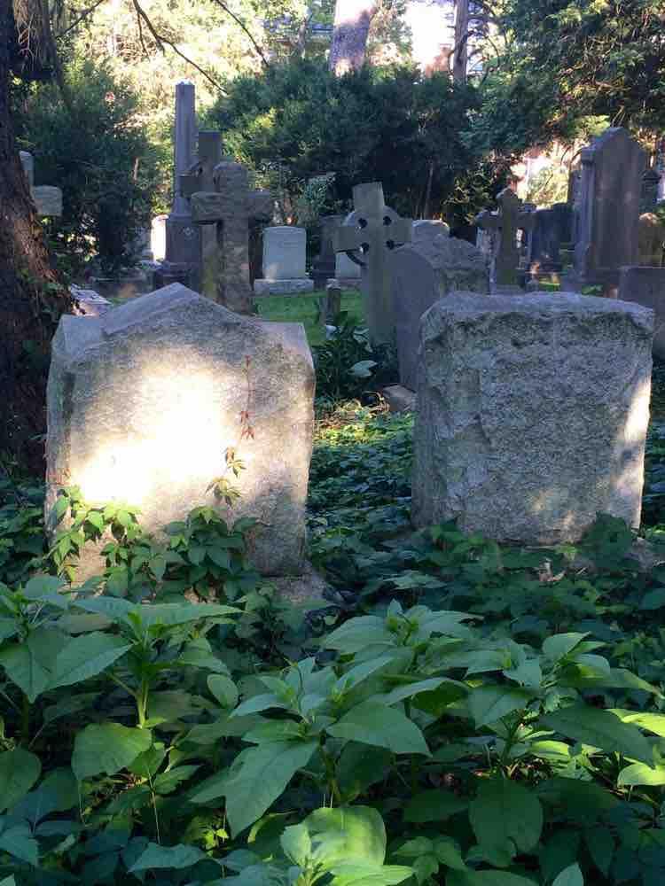 cemetery tombstones at University of Virginia