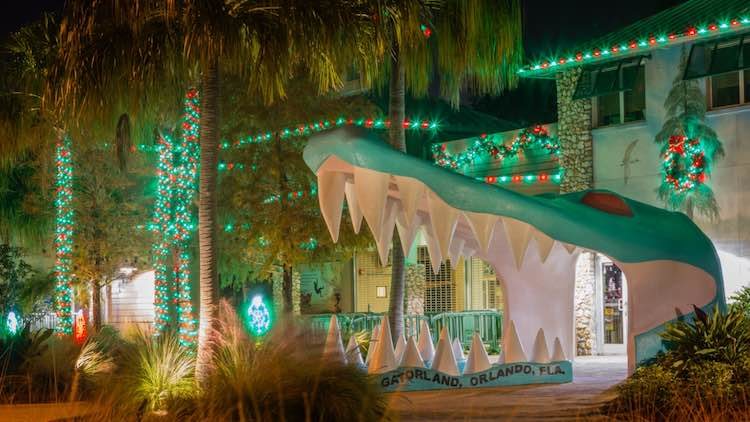 Fun Tropical Christmas Decorations To Inspire A Florida