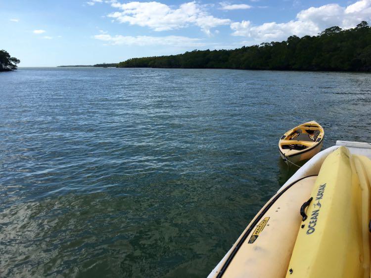 Florida kayaking with Everglades Area Tours