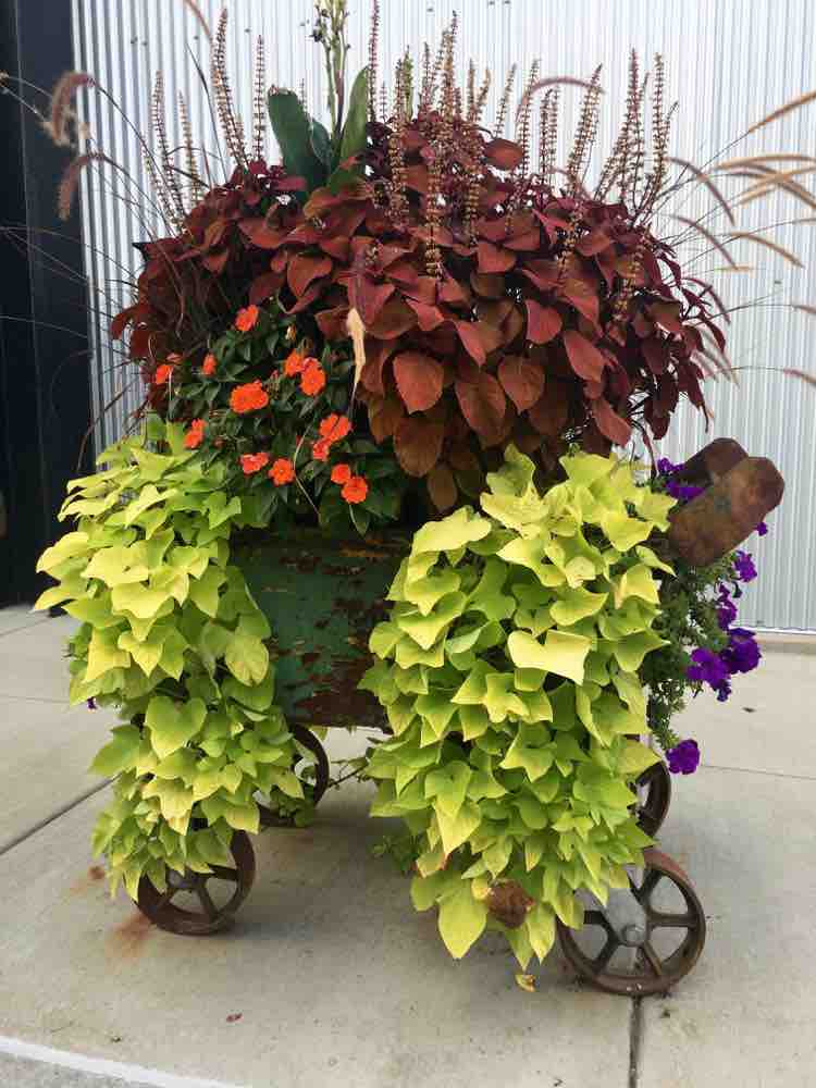 Ironworks Campus Beloit foundry cart with flowers