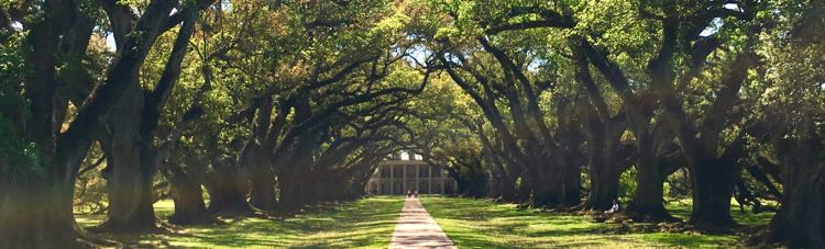 Oak Alley Plantation in Vacherie Louisiana