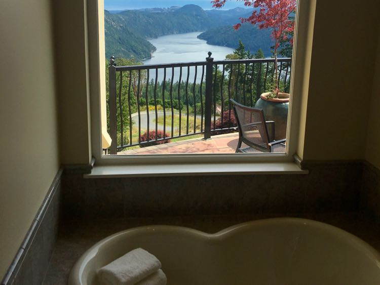 luxury bathtub with amazing view