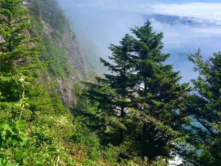 scenic drive along Oregon coast