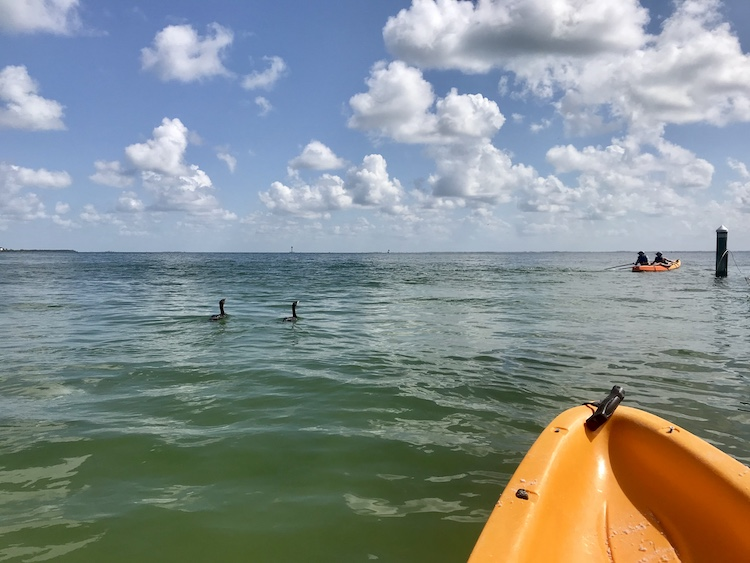 luxury resorts with paddling and water sports