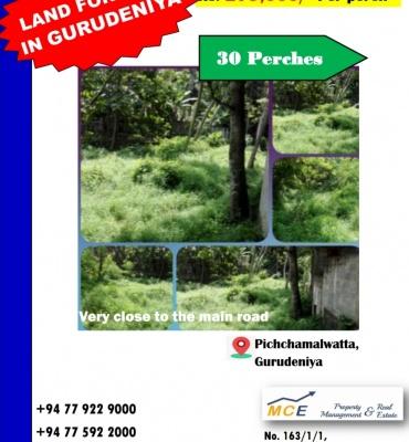 Gurudeniya, Kandy, ,Land,For sale,1104