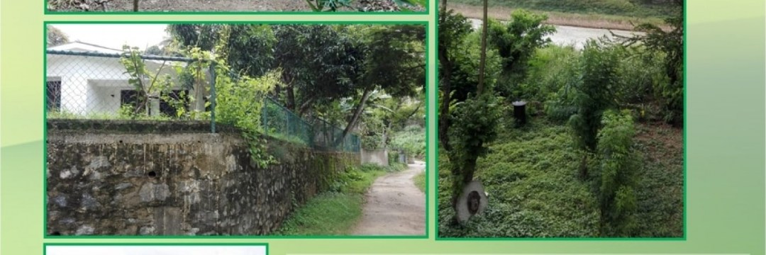 19.5 Perches Land for Sale at Kundasale - Kandy