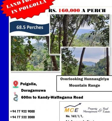 51 Doragamuwa Road, Polgolla, Kandy, ,Land,For sale,Doragamuwa Road,1093