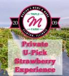 Triple M Strawberries