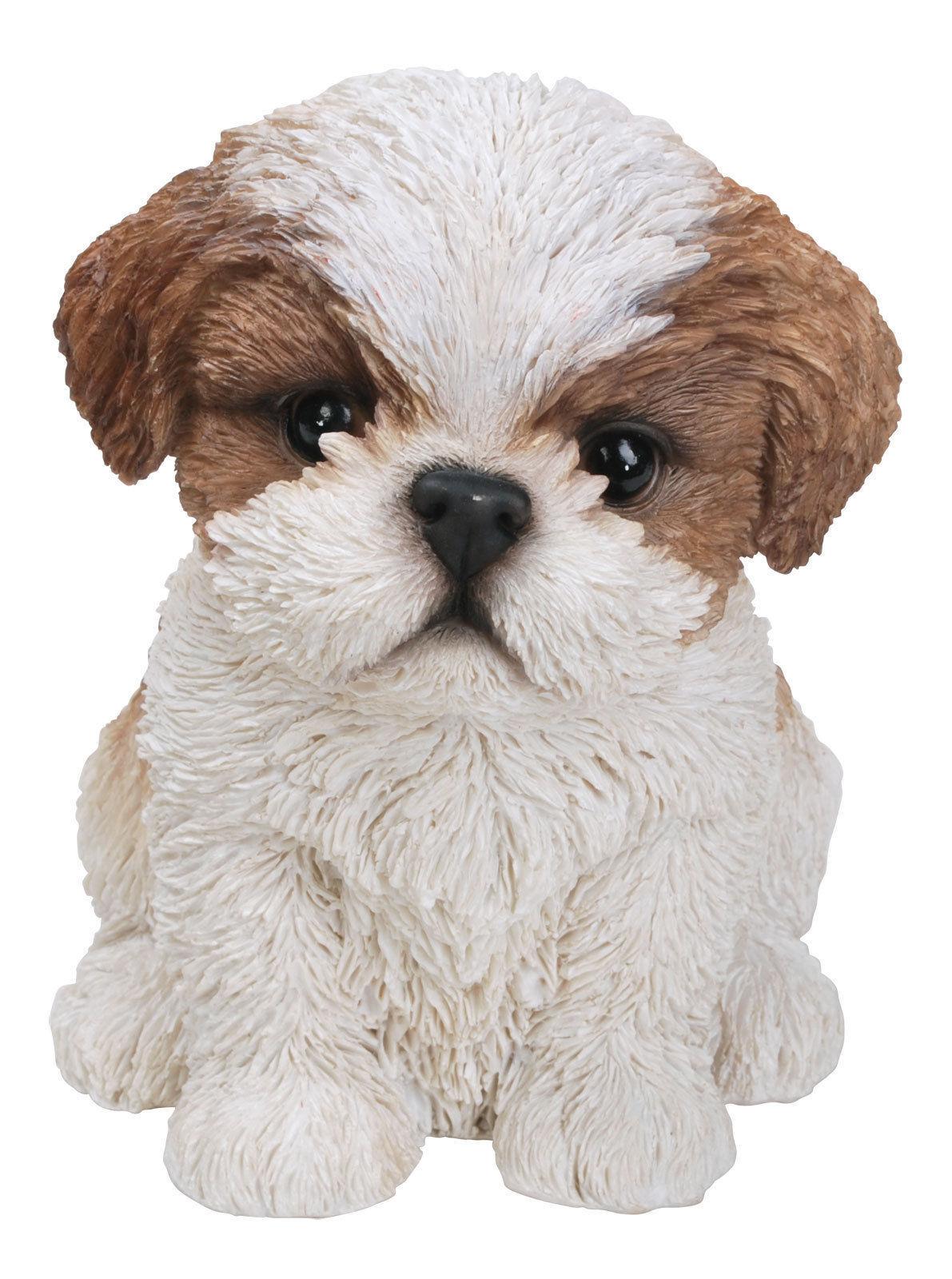 Vivid Arts Pet Pal Dogs Brown Shih Tzu Ornamentdecoration