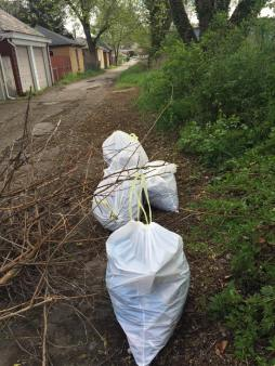 Volunteers collected nearly 500 bags of garbage during Saturday's Cleanup.