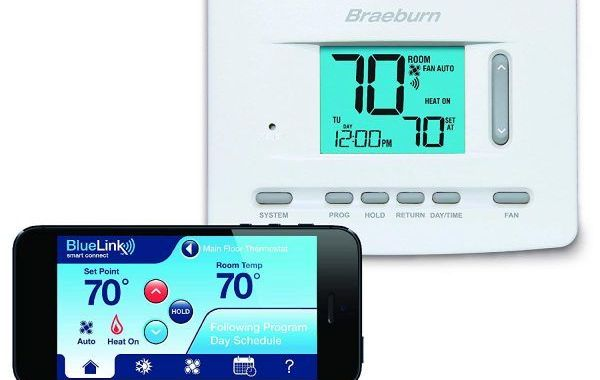 Braeburn-7205