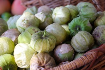 mcleod_creek_farmers_market_margaret_river_tomatillos