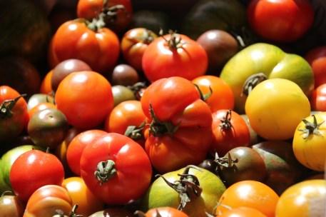 mcleod_creek_farmers_market_margaret_river_tomatoes