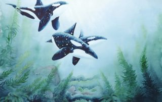 A water colour painting of a family of orcas surrounded by seaweed by Keith Cains.