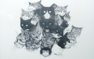 An ink on Mylar image of over 10 cat heads of differing kinds and with various expressions by Keith Cains in Sidney, BC.