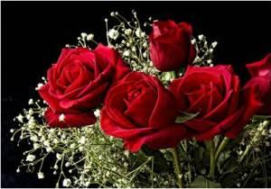 rose_nosegay