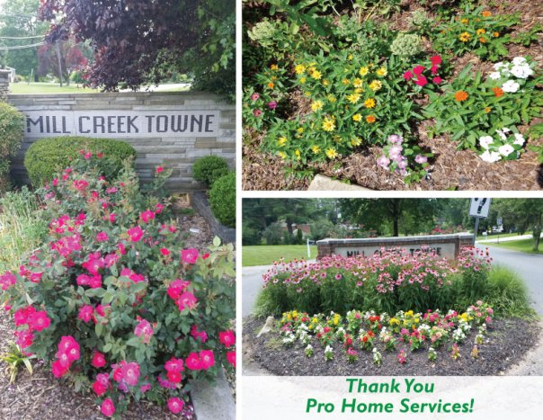 thank-you-prohomeservices
