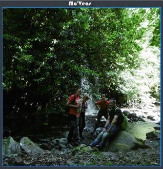 Foto grupo pequeña cascada