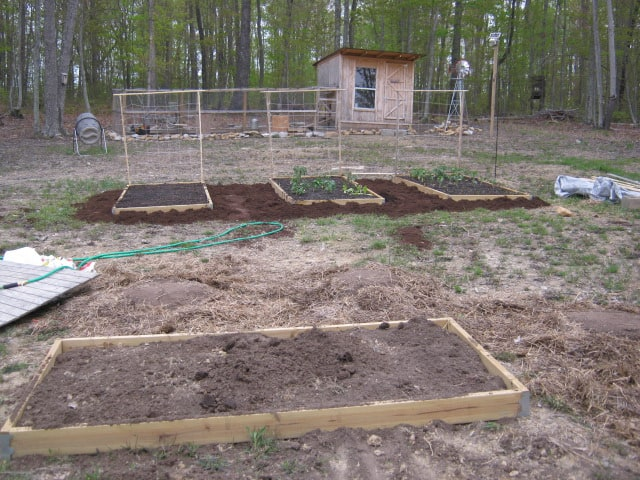 Is Treated Lumber Safe for Building Raised Bed Vegetable Gardens