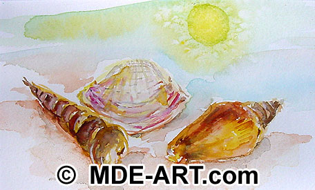 Watercolor art of sea shells