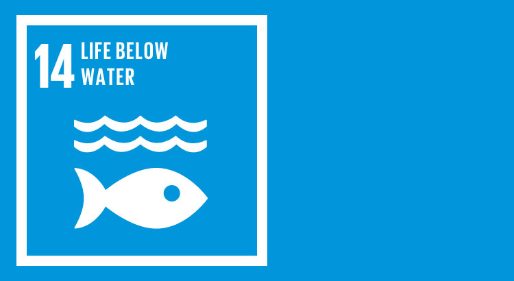 SDG 14 - Conserve and sustain the oceans, seas and marine resources
