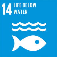SDG 14 – Conserve and sustain the oceans, seas and marine resources