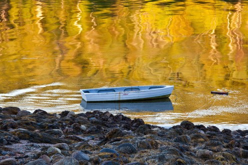 A dinghy rides out low tide in Otter Cove on a September morning.
