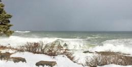 SRoberts Ocean Drive