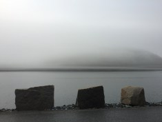 Somes Sound Fog