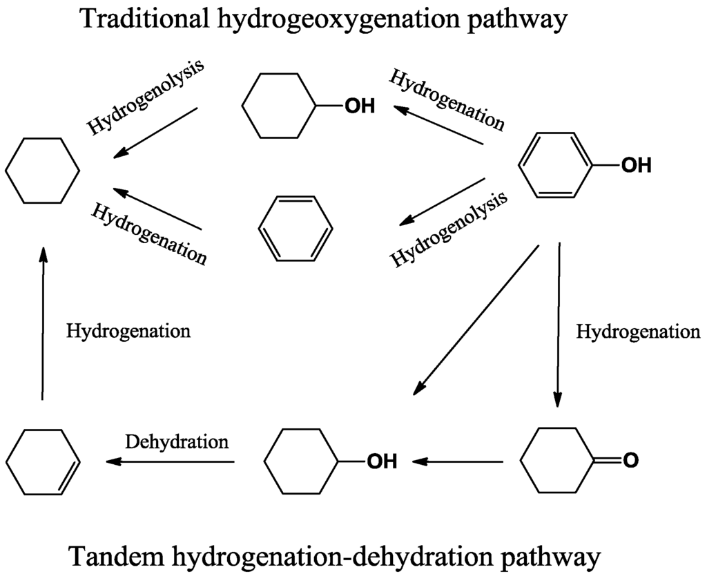 What Is Dehydration Synthesis