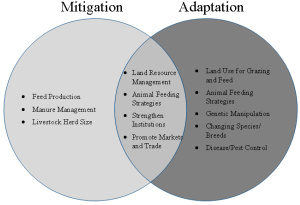 Climate   Special Issue : Strategies for Climate
