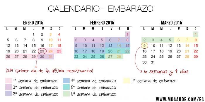 CALCULADORA DE EMBARAZO - Cómo Calcular las Semanas de Embarazo - MD ...