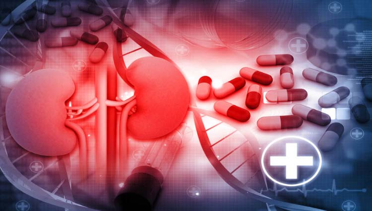 Remédios que fazem mal aos rins