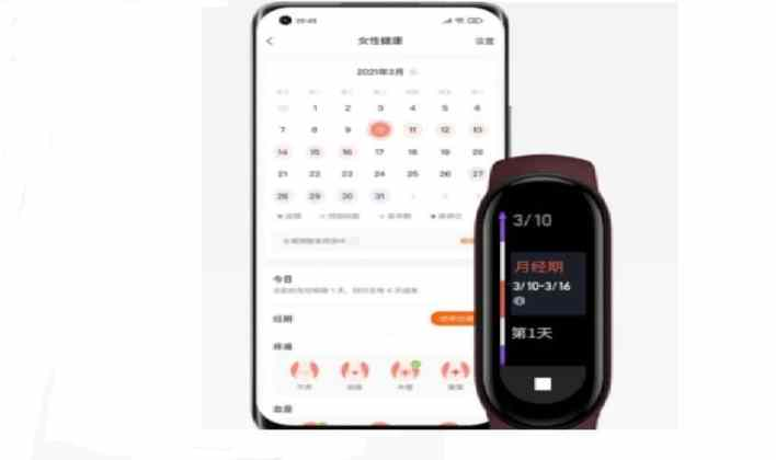 mi band 6 feature