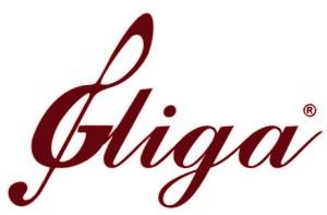 Image result for gliga violin logo