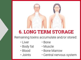 Detoxification of Body - Long Term Storage