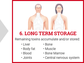 Detoxification of Body - Long Term Storage
