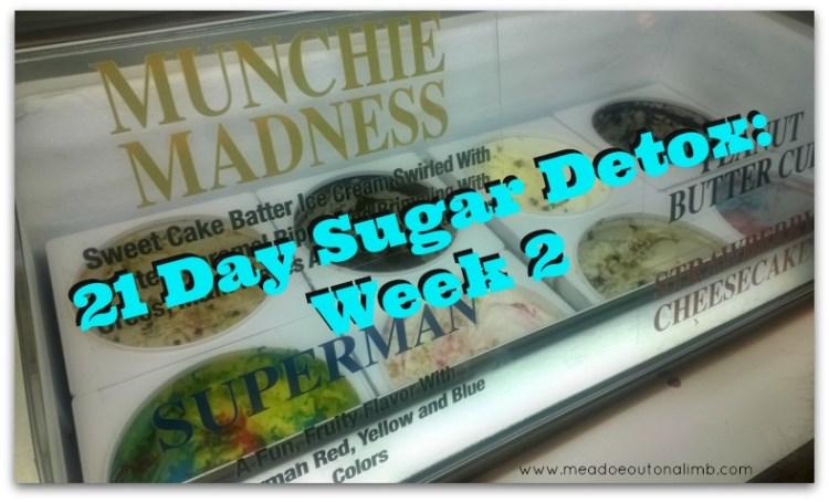 21DSD Week 2