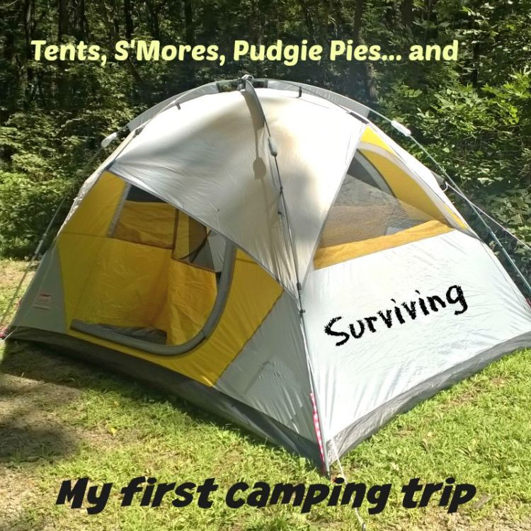 Camping 101 - Out on a Limb