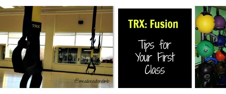 Gym Love: TRX Fusion