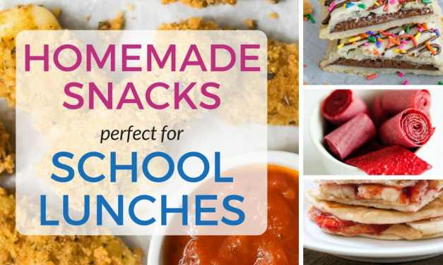 13 Healthy Homemade Snacks for Kids Lunch Boxes