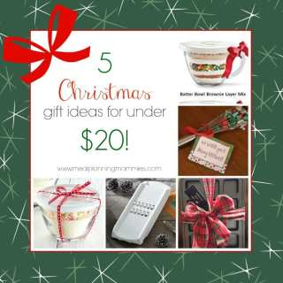 Five Fun, Inexpensive, and Easy Christmas Gift Ideas For Under $20 each!!