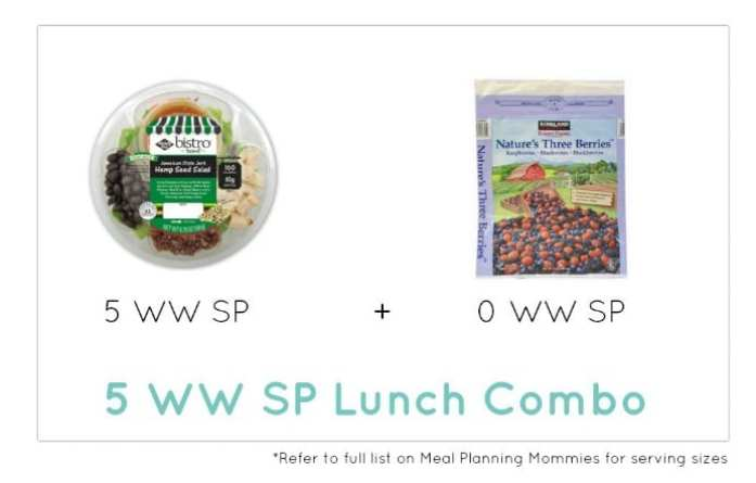 Weight Watcher Lunch Combo 3 - Meal Planning Mommies