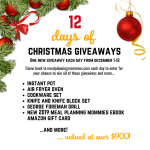 12 Days of Christmas Giveaways starts tomorrow!