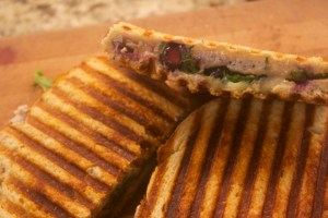 Arugula, Turkey, Blueberry and Mozzarella Panini
